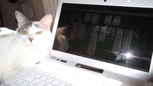 The King Plays Solitaire
